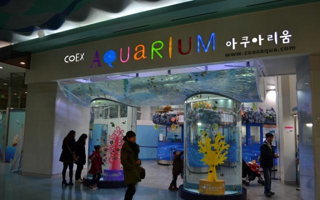 Akvárium COEX je součástí nákupního střediska stejného názvu