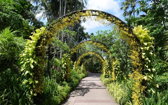 Botanická zahrada v Singapuru