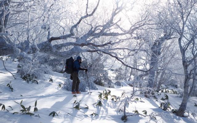 Zasněžená příroda je i v Japonsku vskutku pohádková