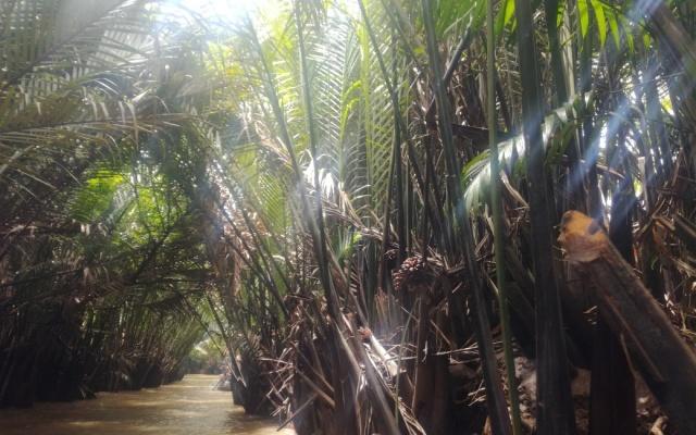 Tien Giang (Horní řeka)