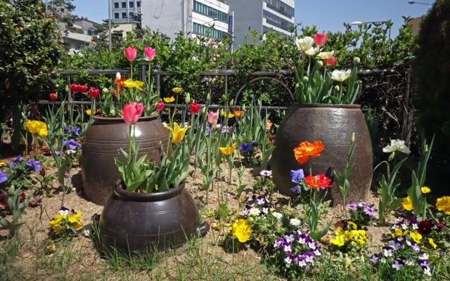 Zeleně a květin není nikdy dost