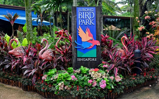 Ptačí park Jurong