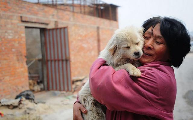 Milovnice zvířat Xiaoyun Yang